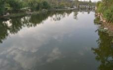 水面倒影图片