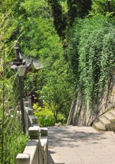 乌山风景图片