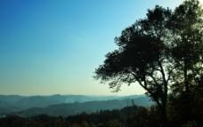 黄昏的深山老林图片