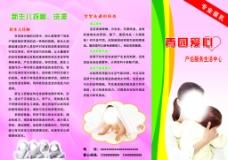 月嫂宣传折页图片