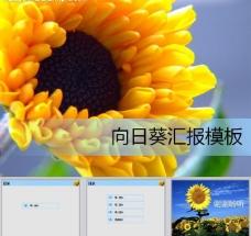 向日葵ppt模板图片