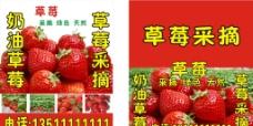 草莓采摘广告源文件图片