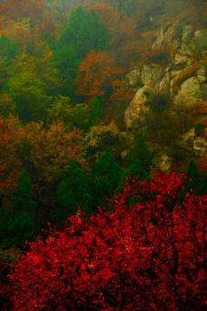 彩色山谷图片