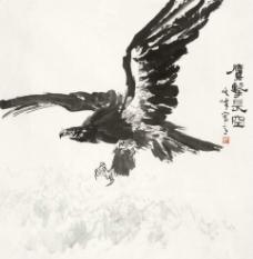 鹰击长空图片