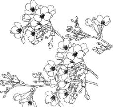 桃花矢量圖圖片