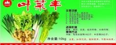叶菜丰桶标图片