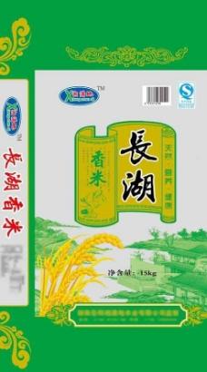 长湖香米图片