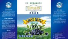 蓝莓手提袋图片