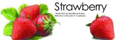 草莓包装图片