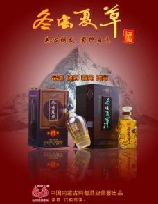 冬虫夏草酒图片