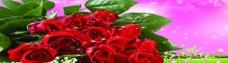 玫瑰无框画图片