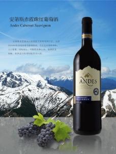 智利葡萄酒海报