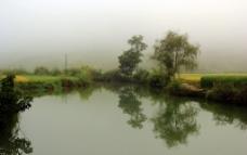 池塘倒影图片