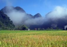 云雾田园图片