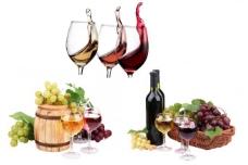 红酒素材 葡萄酒图片