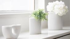 家居写真 花瓶 窗台图片
