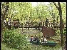 小桥划船视频素材