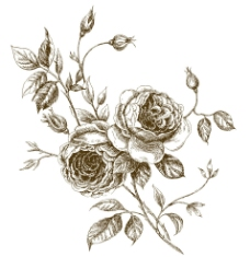 花素材圖片