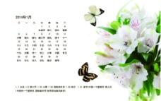 2014百合蝴蝶日历图片
