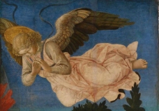 弗朗西斯科 菲利普 天使图片