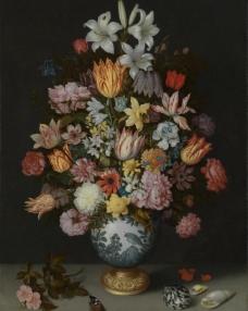 花和贝壳图片