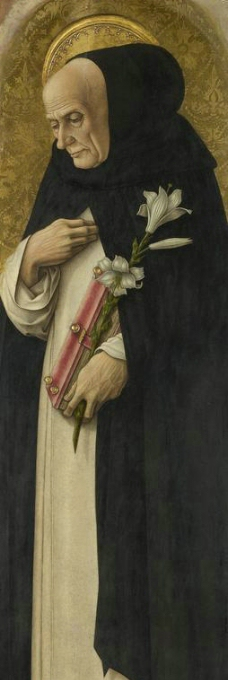 卡洛 圣多米尼克图片
