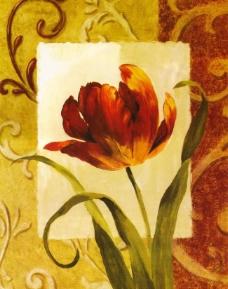 设计花卉图片