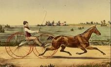 骑马者图片