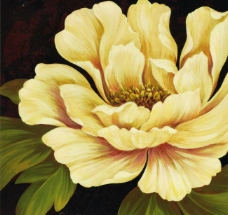 花卉绘画图片
