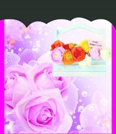 玫瑰花 手提袋 花图片
