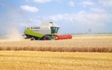 农业生产图片