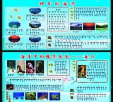 海洋生物展板图片