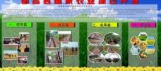 地方农业展板图片
