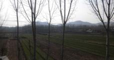 耕地风景图片