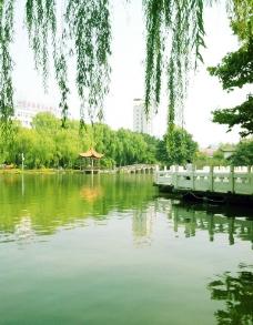 北湖公园图片