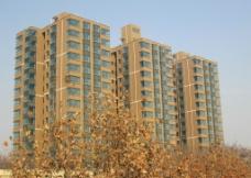 黄叶楼 建筑图片
