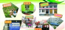 小溪村展板图片