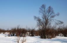 根河南河套冬天风景图片