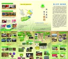农产品宣传四折页图片