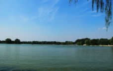 圆明园湖图片