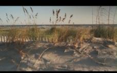 荒漠背景视频素材