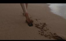 海滩背景视频素材