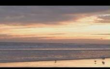 海灘黃昏視頻素材