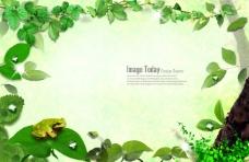 绿叶和青蛙绿色背景素材