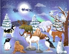 圣诞老人 动物图片