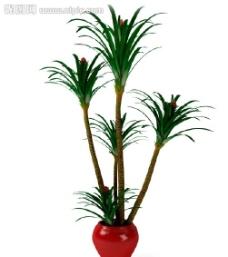 盆栽 优秀盆栽模型图片