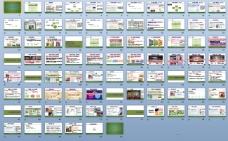 2011玉兰墙纸互联网营销推广策划方案